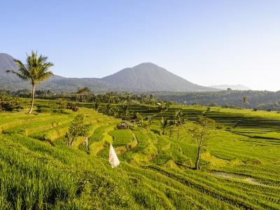 Jour11-Java-Bali-Lombok